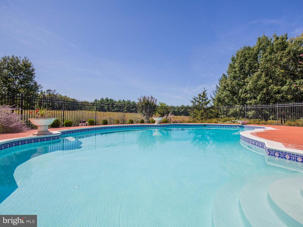 Salt Water Pool - 37575 CHARTWELL LN, PURCELLVILLE