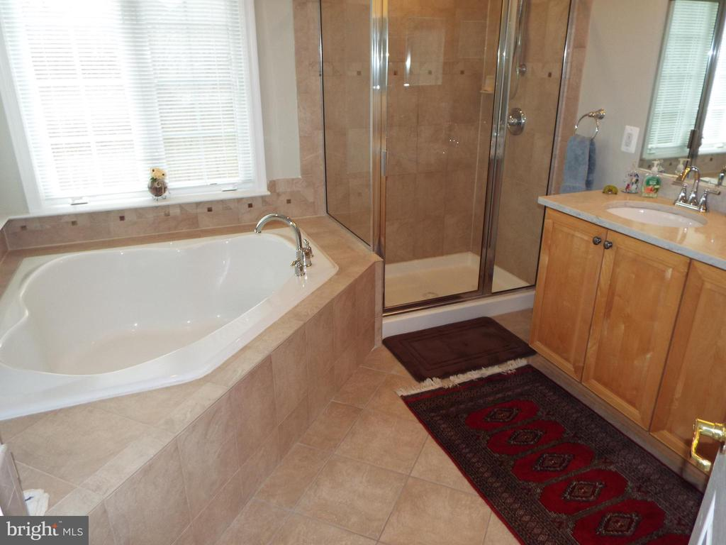 Master Bath - 20344 CENTER BROOK SQ, STERLING