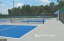 Pickle ball  and tennis courts - 1010 EASTOVER PKWY, LOCUST GROVE