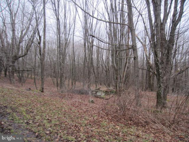 土地,用地 为 销售 在 Grantsville, 马里兰州 21536 美国
