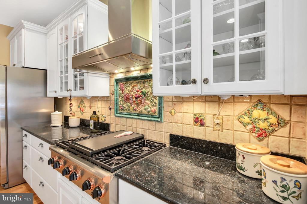Beautiful upgrades: granite, tile and SS appliance - 47285 OX BOW CIR, STERLING