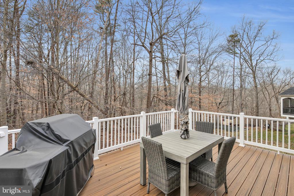Home backs to 150 acre wooded parkland - 47285 OX BOW CIR, STERLING