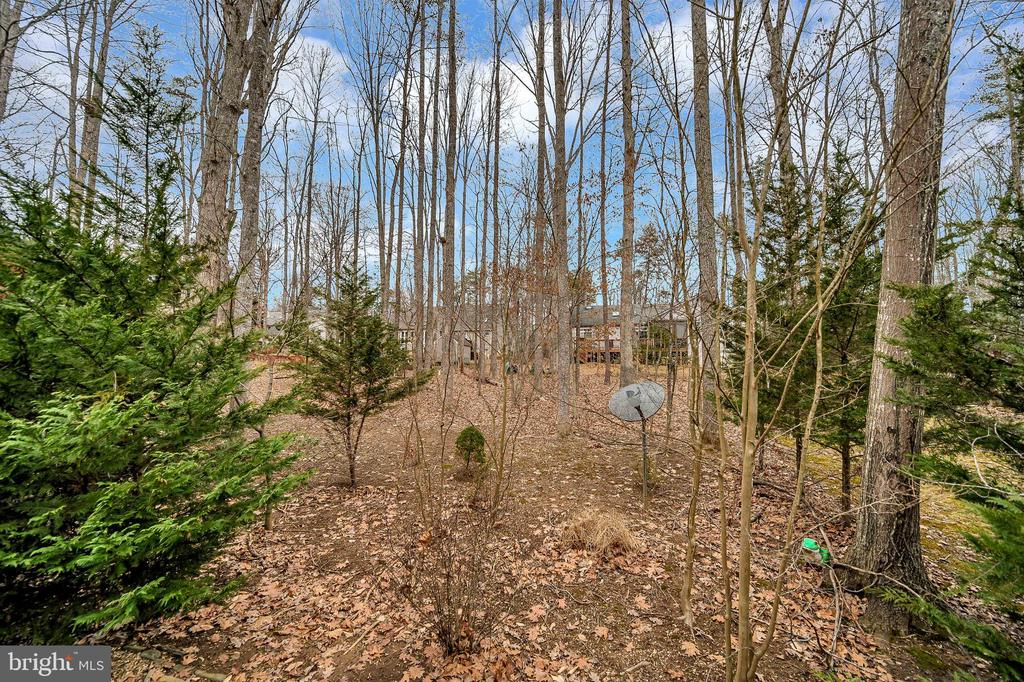 Wooded back yard - 1010 EASTOVER PKWY, LOCUST GROVE