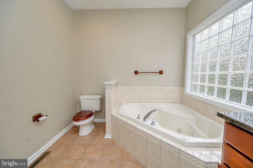 Let the sun shine in the master bath - 1010 EASTOVER PKWY, LOCUST GROVE