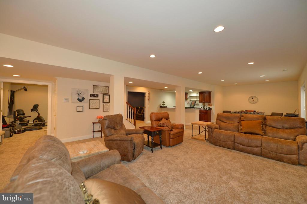 Magnificent Finished Lower Level - 36335 SILCOTT MEADOW PL, PURCELLVILLE