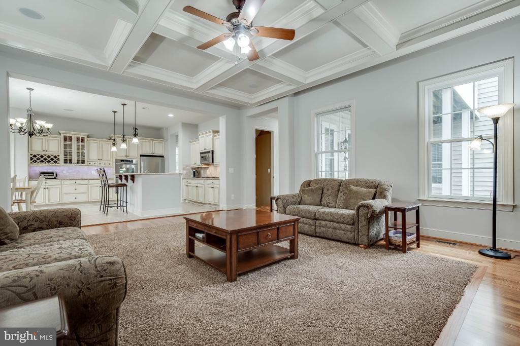 Large Family Room w/ Cofferred Ceiling & Fireplace - 21883 KNOB HILL PL, ASHBURN