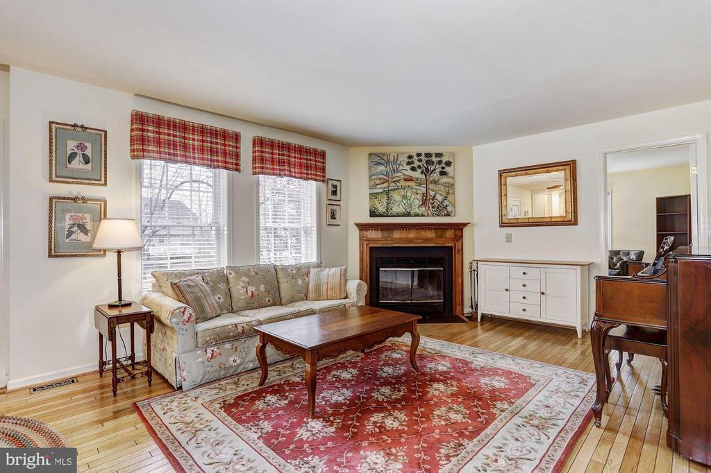 Family Room | Fireplace - 10419 GORMAN RD, LAUREL