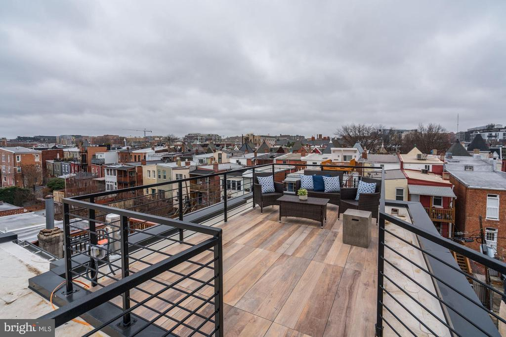 Rooftop Goals Achieved - 917 S ST NW #2, WASHINGTON