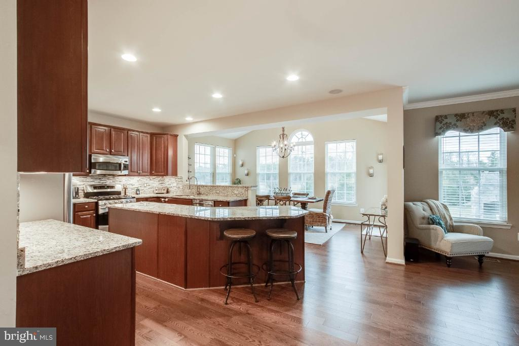 Gourmet Kitchen with Stainless Steel Appliances - 26003 KIMBERLY ROSE DR, CHANTILLY