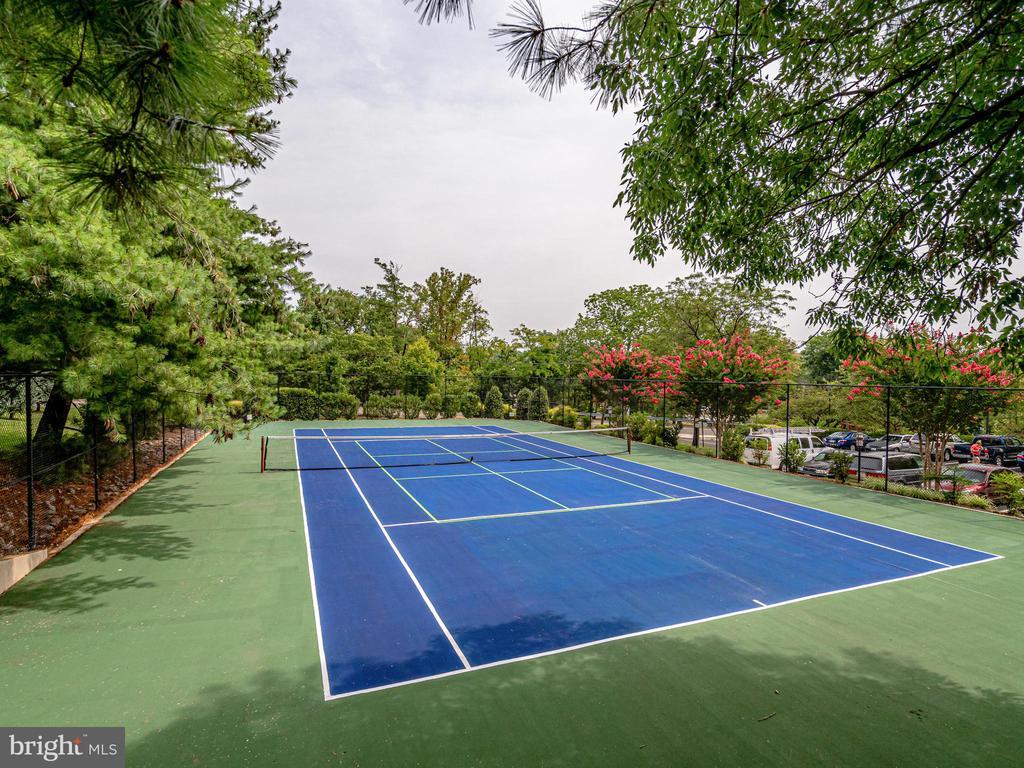 Tennis Court #1 - 5500 HOLMES RUN PKWY #1517, ALEXANDRIA