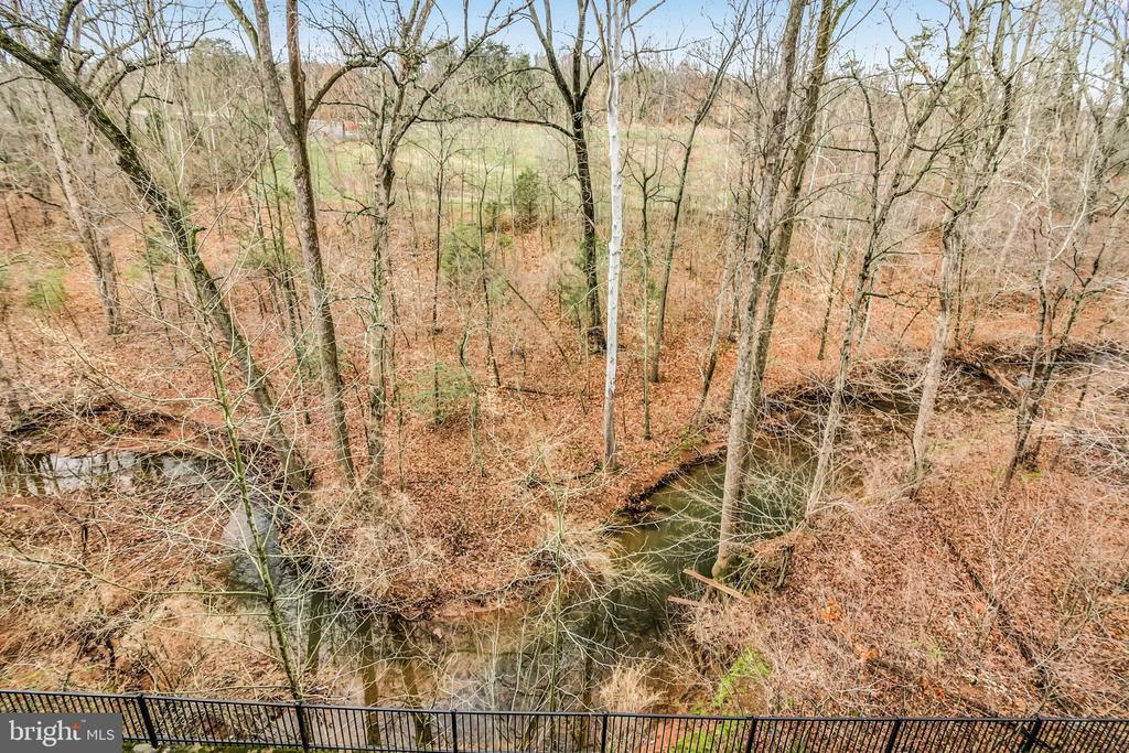 View from Balcony - 9724 HOLMES PL #203, MANASSAS PARK