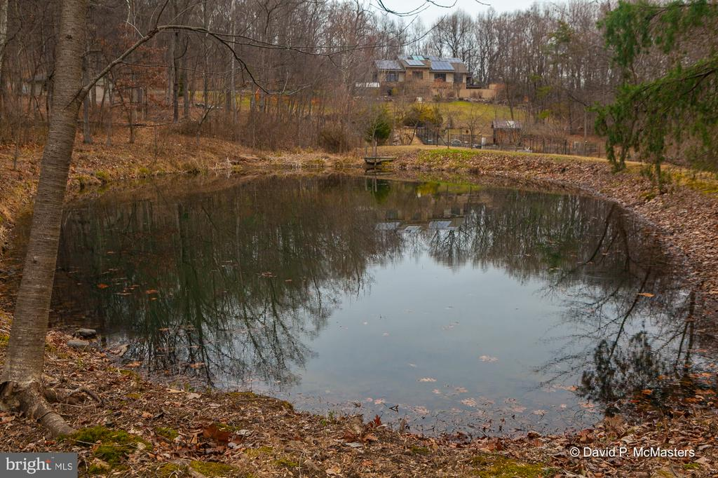 Pond for reflection and paddle boating - 212 CICADA DR, MARTINSBURG