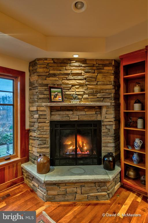 Gas Fire place in main level family room - 212 CICADA DR, MARTINSBURG