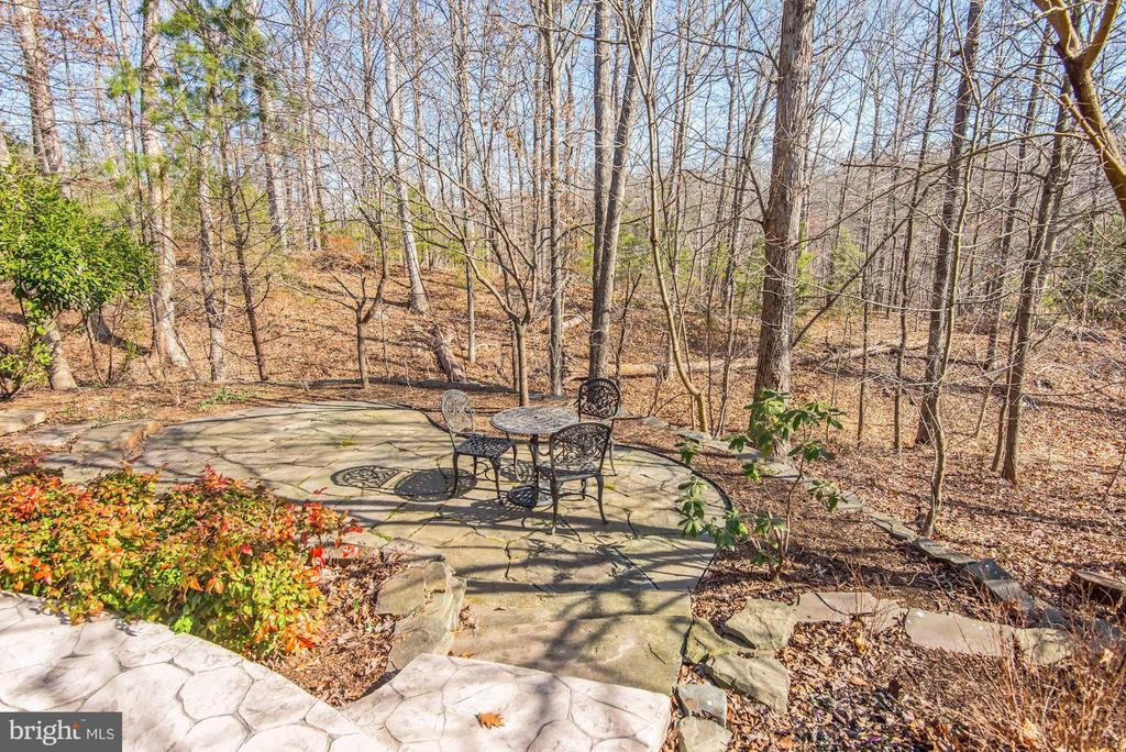 Beautiful Backyard - 43265 OVERVIEW PL, LEESBURG