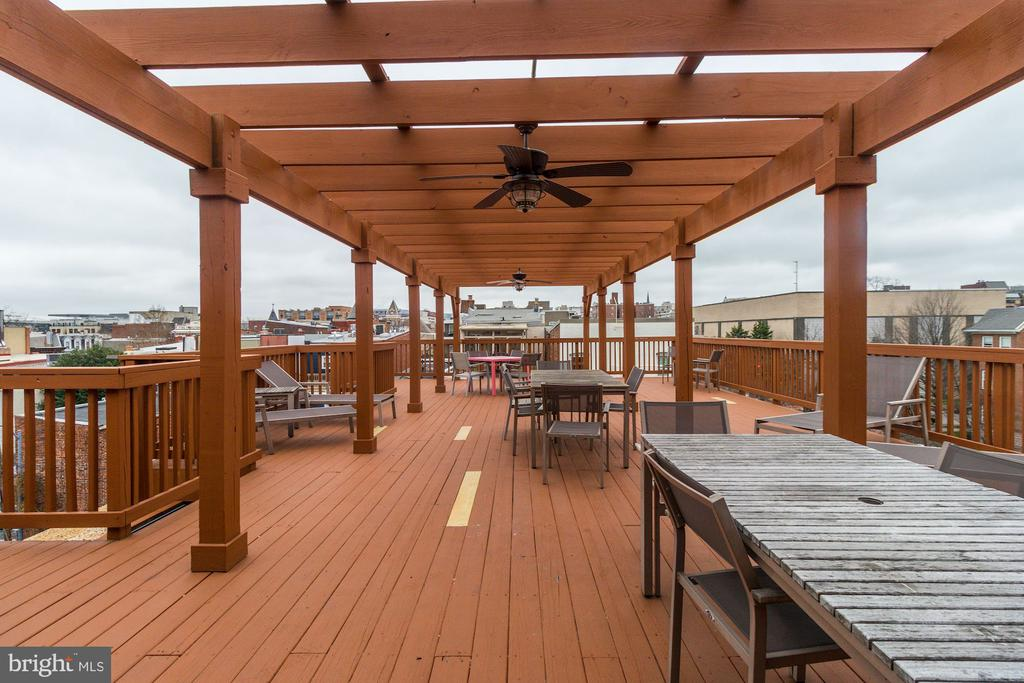 Shared RoofDeck to Enjoy! - 1425 11TH ST NW #103, WASHINGTON
