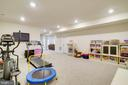 LL Rec/Exercise Room - 6141 FALLFISH CT, NEW MARKET