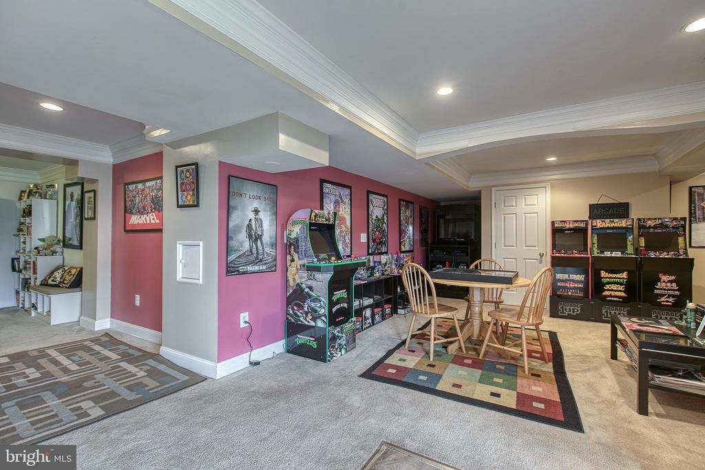 Finished Basement - 1819 COTTON TAIL DR, CULPEPER