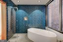 Exquisite Tiling and Boffi Bathtub and Fixtures - 2113 S ST NW, WASHINGTON