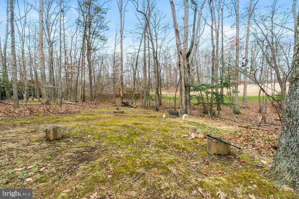 The back yard borders the golf course. - 115 GOLD RUSH DR, LOCUST GROVE