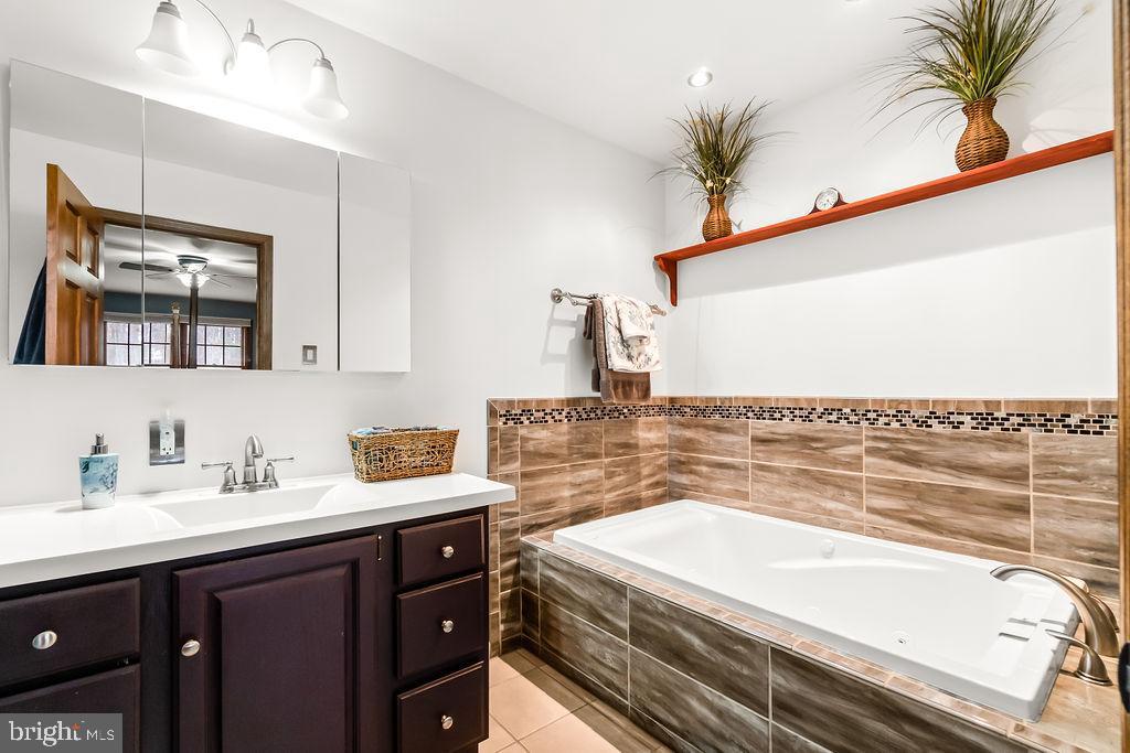 Master bath with large soaking tub. - 115 GOLD RUSH DR, LOCUST GROVE