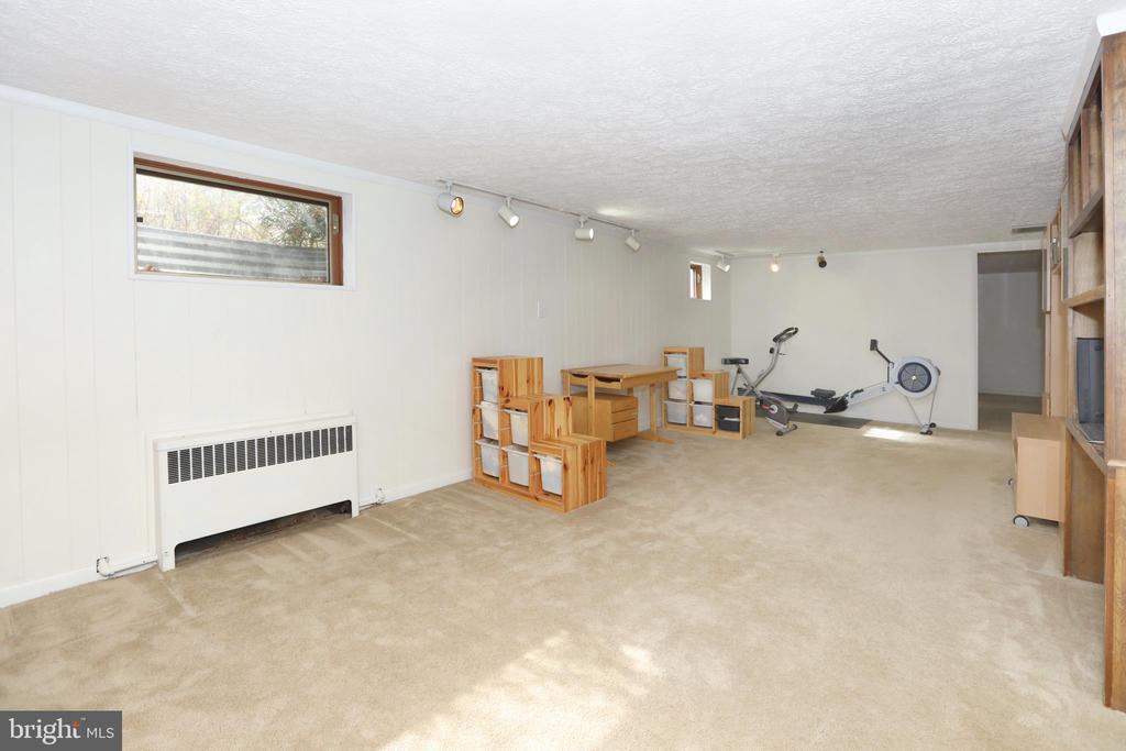 LL Recreation Room - 9020 SOUTHWICK ST, FAIRFAX