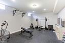 Home gym (or potential 6th bedroom) with closet - 38261 VALLEY RIDGE PL, HAMILTON
