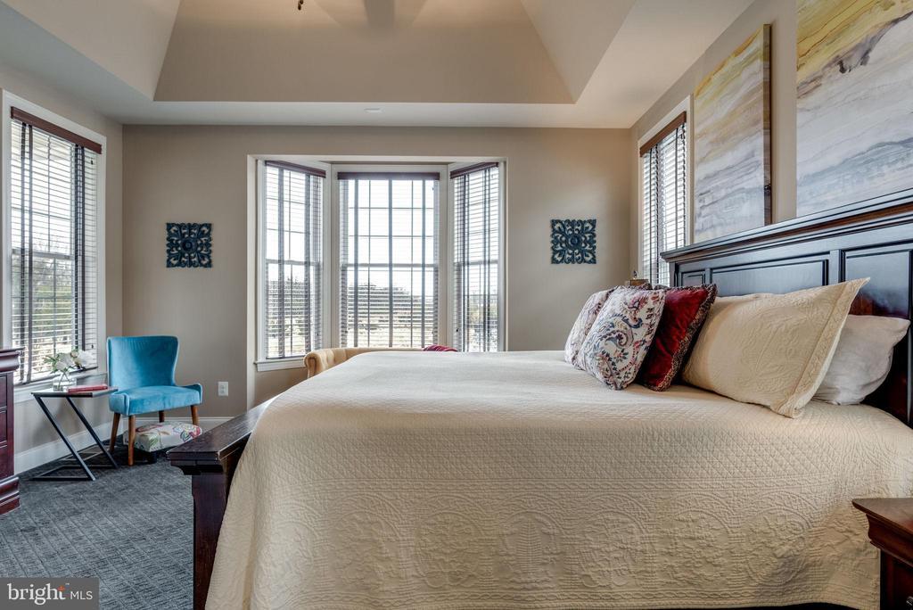 Master bedroom - 44629 GRANITE RUN TER, ASHBURN