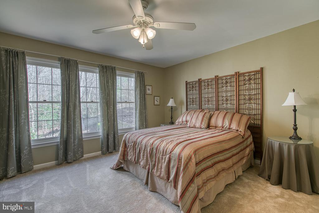 Master  bedroom with brand new carpet - 3220 TITANIC DR, STAFFORD