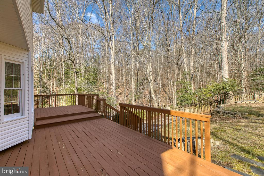 Deck built for entertaining - 3220 TITANIC DR, STAFFORD
