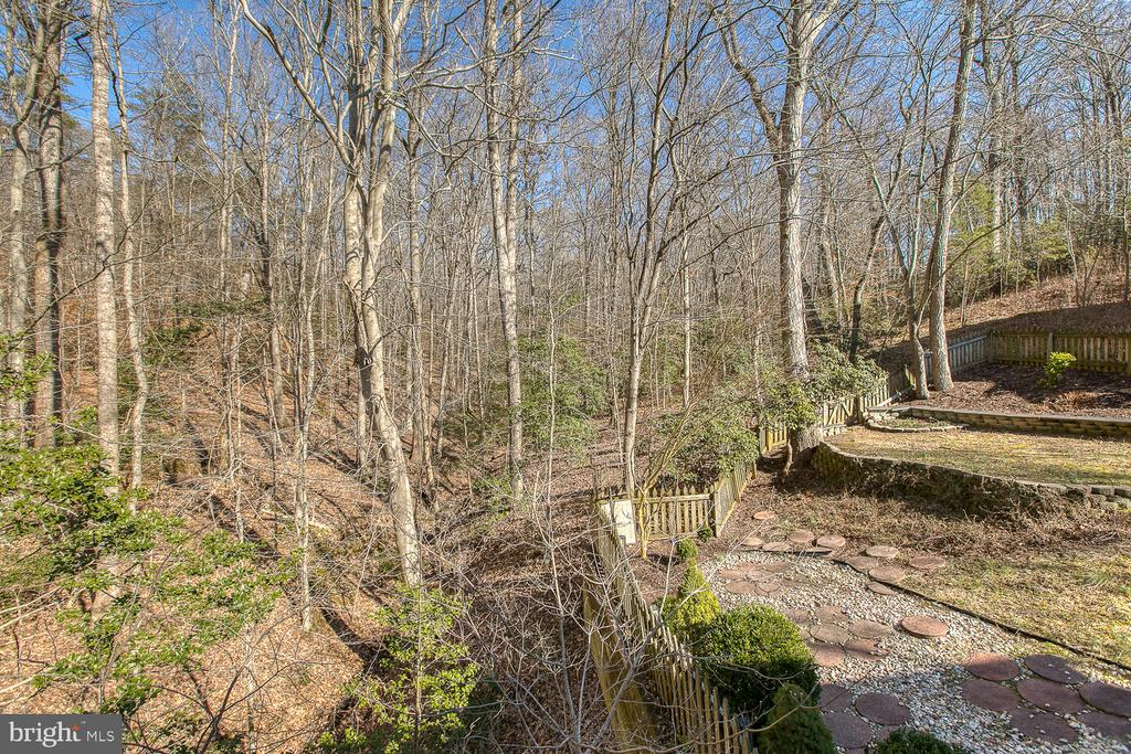 Natural beauty of the large lot - 3220 TITANIC DR, STAFFORD