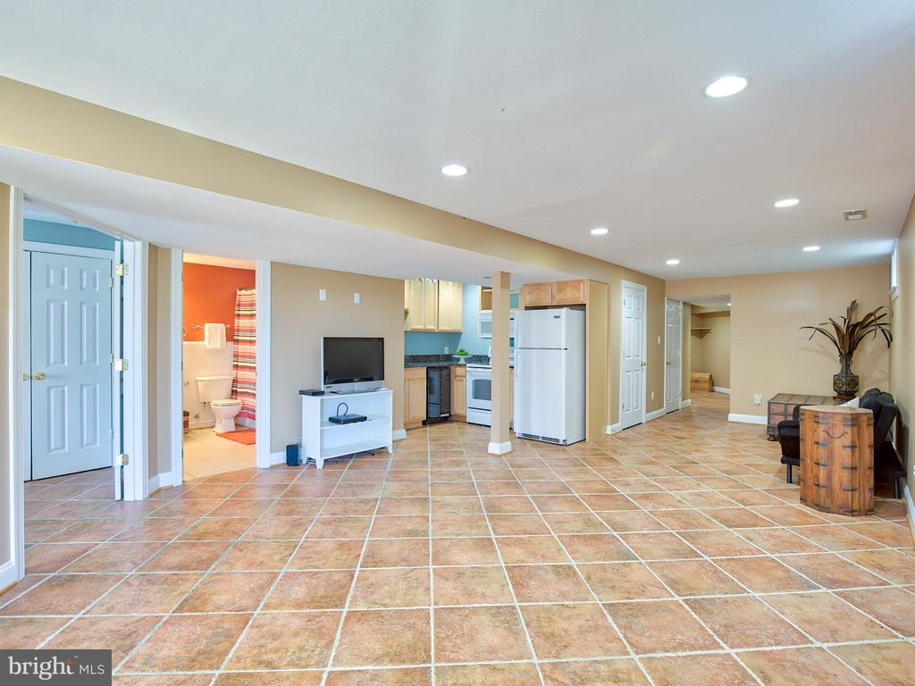Finished walkout lower level with kitchen. - 17244 RAVEN ROCKS RD, BLUEMONT