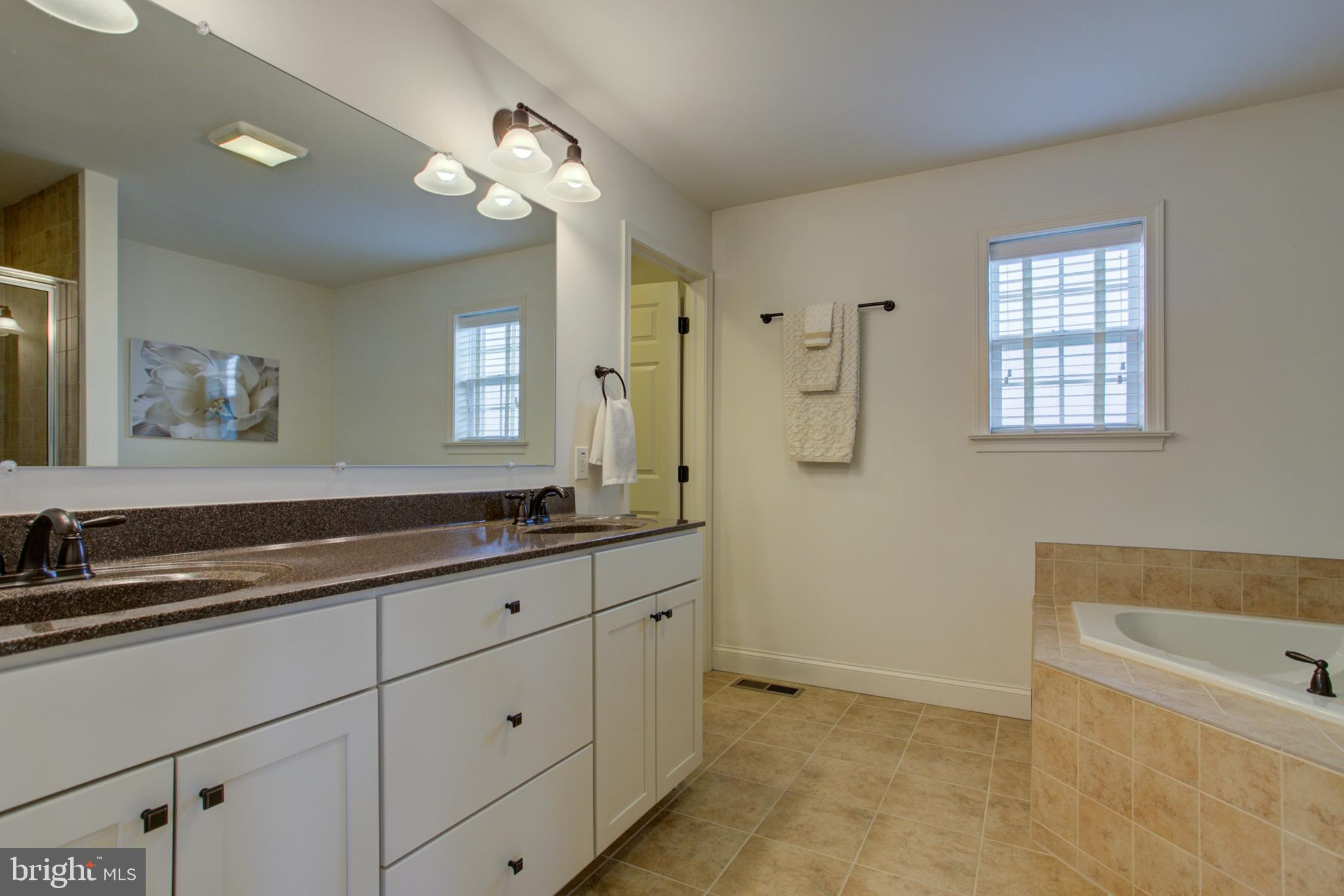 Master Bathroom double bowl vanity