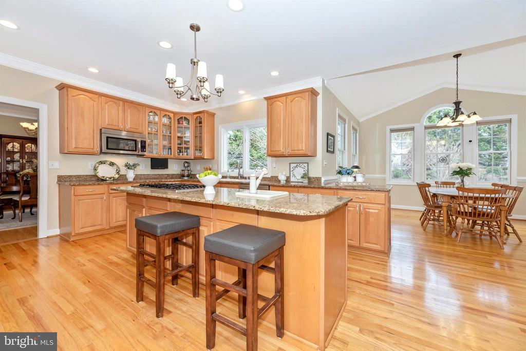 Granite and Stainless Steel Appliances - 5221 MUIRFIELD DR, IJAMSVILLE