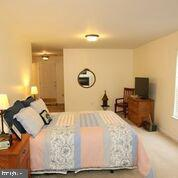 Large bright room - 20812 MIRANDA FALLS SQ, STERLING