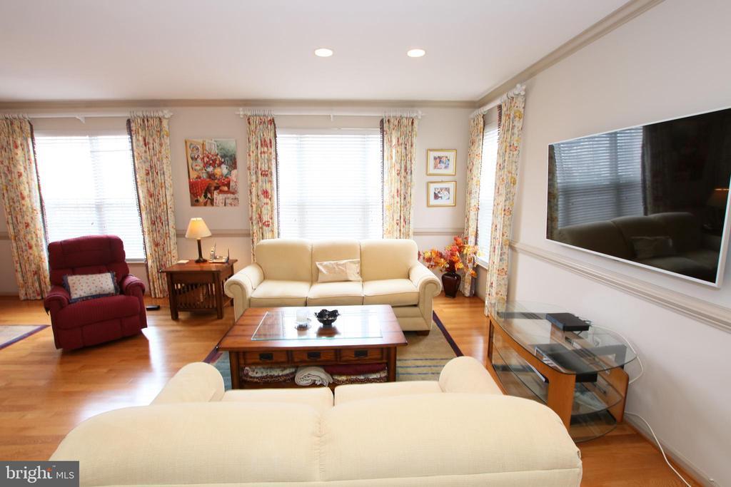 Large living room, custom rods,  draperies, blind - 20812 MIRANDA FALLS SQ, STERLING