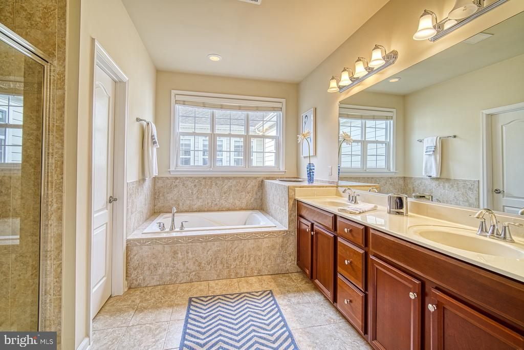 double sink and jacuzzi tub - 19348 GARDNER VIEW SQ, LEESBURG