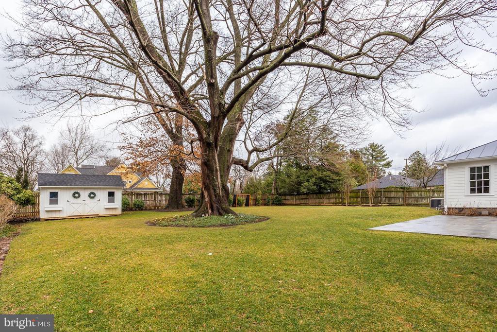 Large Level Backyard - 4205 GLENROSE ST, KENSINGTON