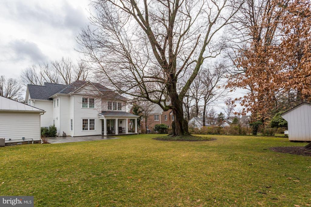 Backyard - 4205 GLENROSE ST, KENSINGTON