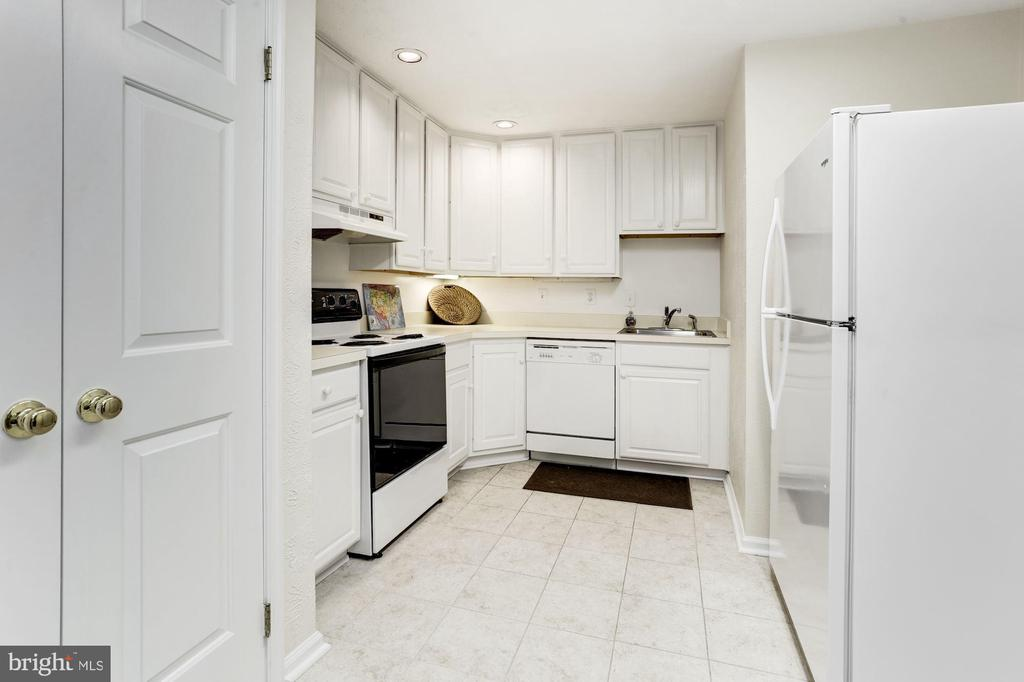 Lower level kitchen - 13701 ESWORTHY RD, GERMANTOWN