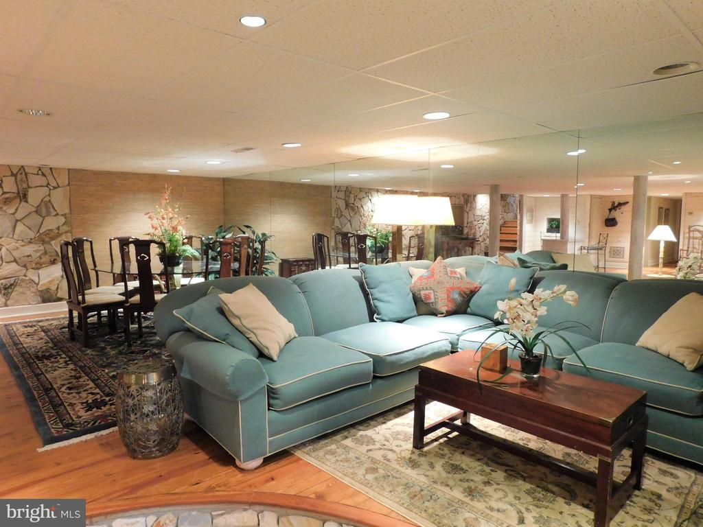 Basement: Plenty of seating for everyone! - 11713 WAYNE LN, BUMPASS