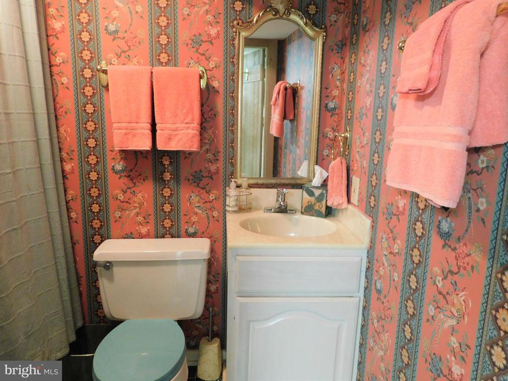 Basement: Full Bath - 11713 WAYNE LN, BUMPASS