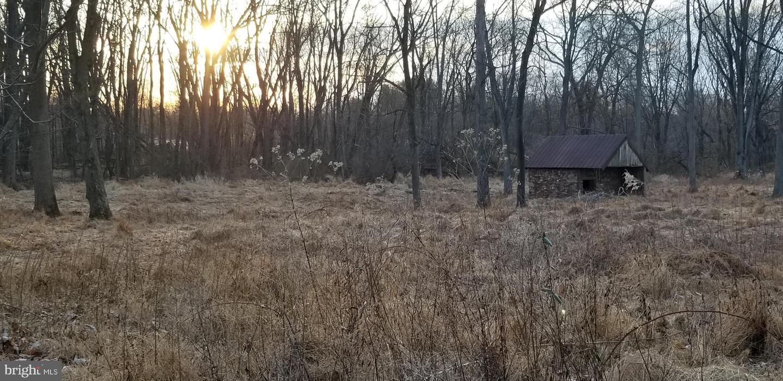 土地,用地 为 销售 在 Colmar, 宾夕法尼亚州 18915 美国