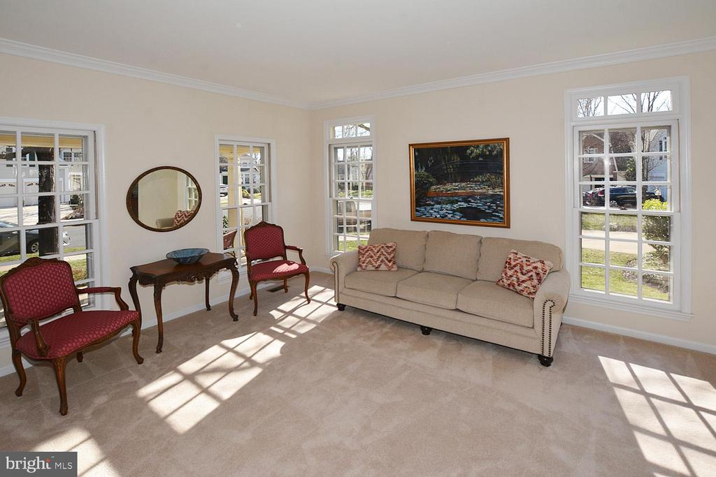 Light and bright - 20269 ROSEDALE CT, ASHBURN