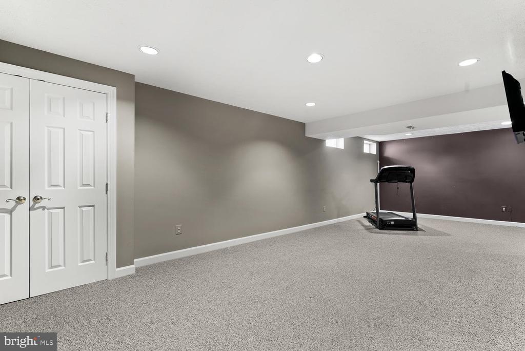 Basement Rec Room - 17715 GLOBE THEATRE DR, OLNEY