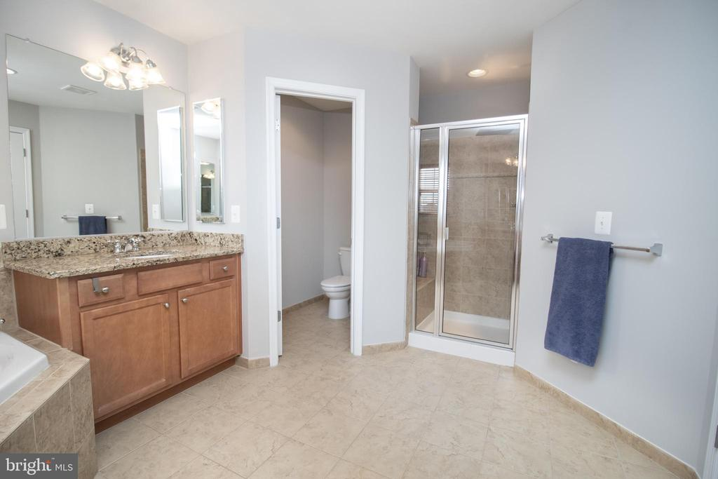 En Suite Master Bathroom - 42011 ZIRCON DR, ALDIE