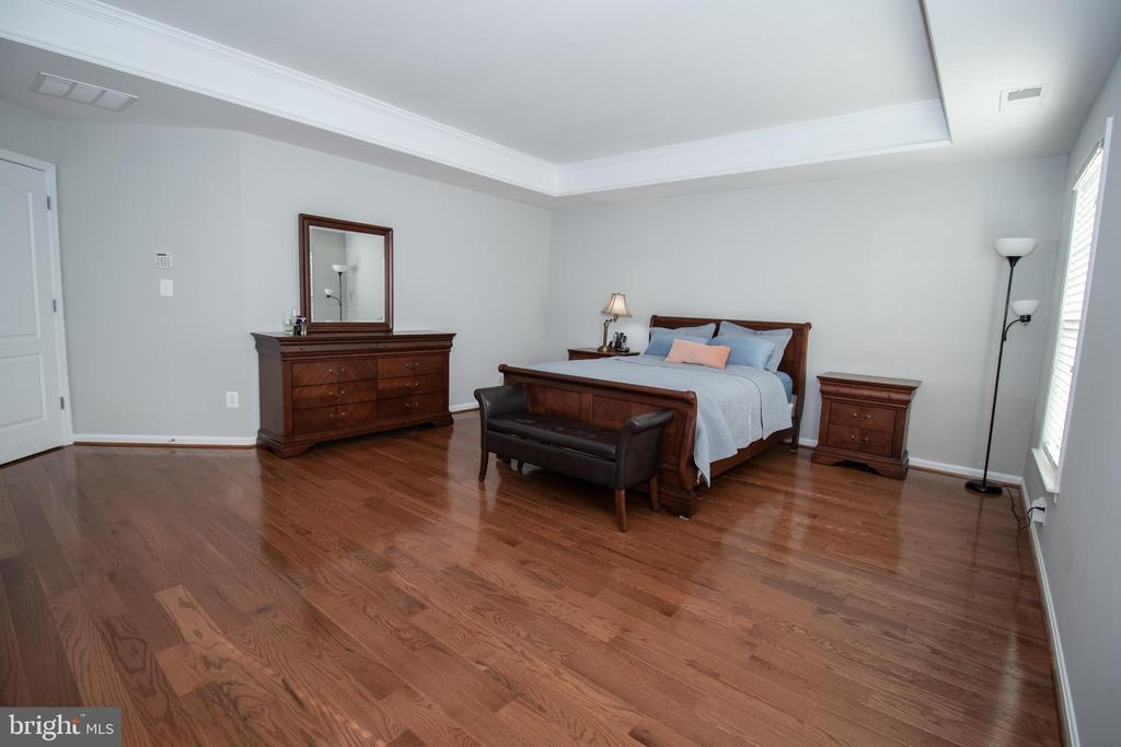 Master Bedroom - 42011 ZIRCON DR, ALDIE