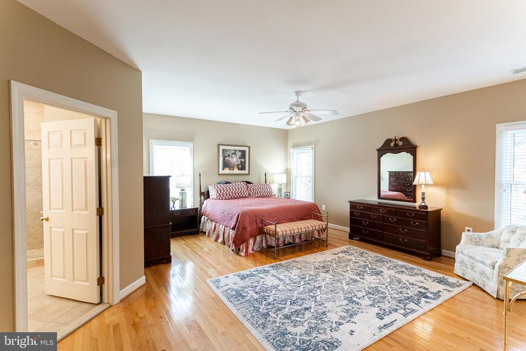 Owner's Suite - 17716 CRICKET HILL DR, GERMANTOWN