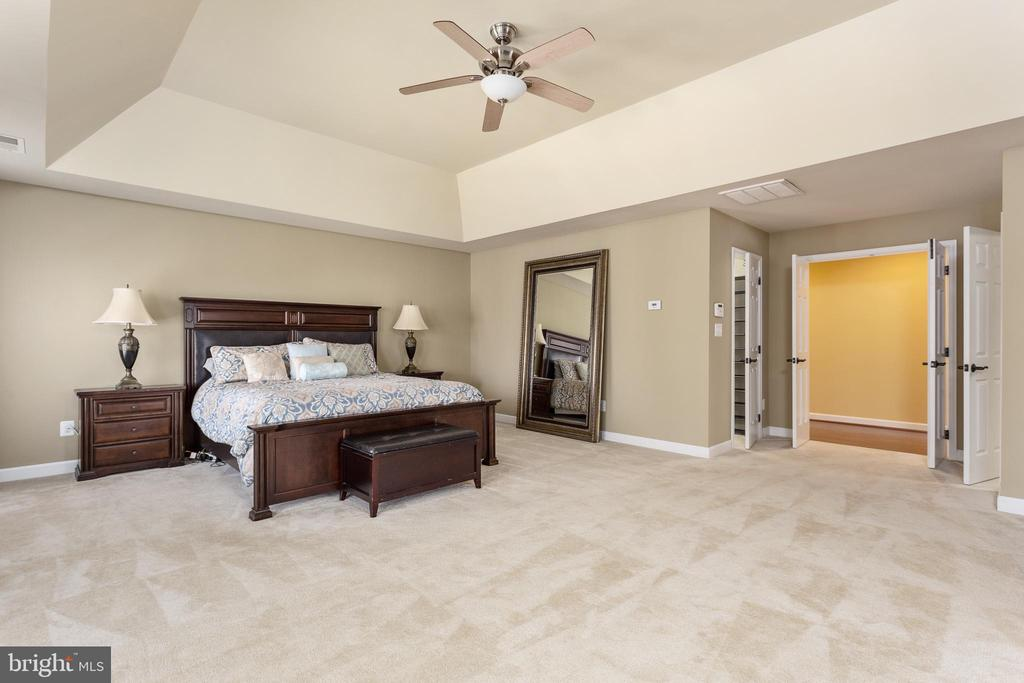 Master Bedroom Suite - 8108 SPRUCE VALLEY LN, CLIFTON