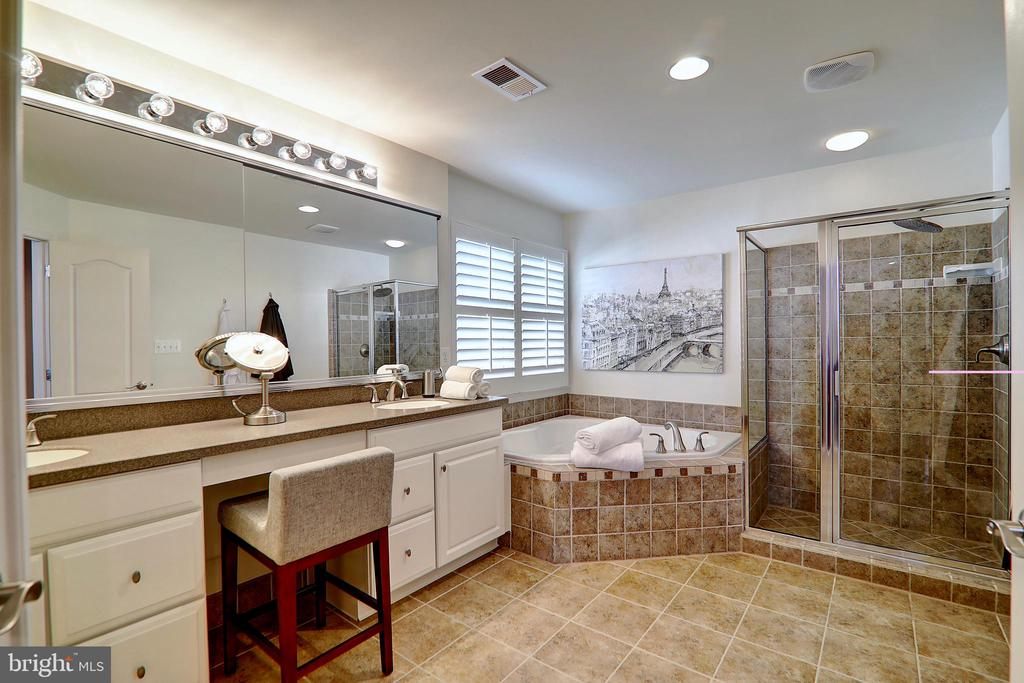 Large Soaking Tub and Separate Shower - 22960 CARTERS STATION CT, ASHBURN