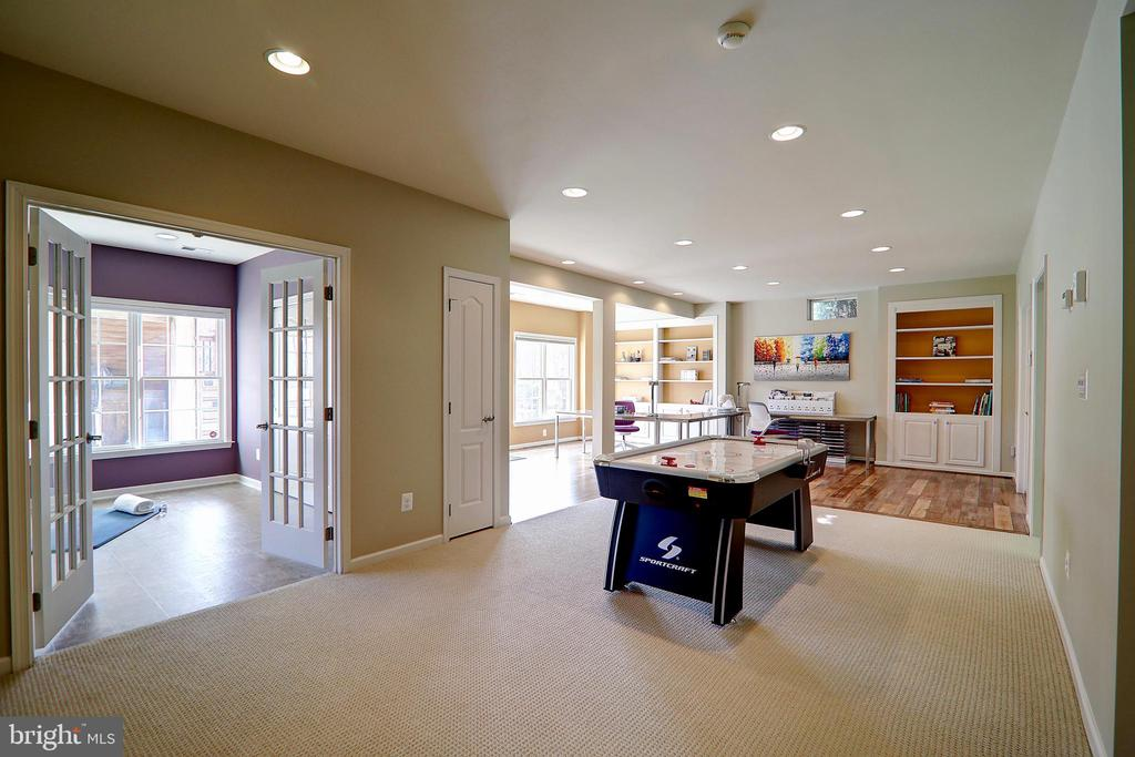 Lower Level Recreation Room - 22960 CARTERS STATION CT, ASHBURN